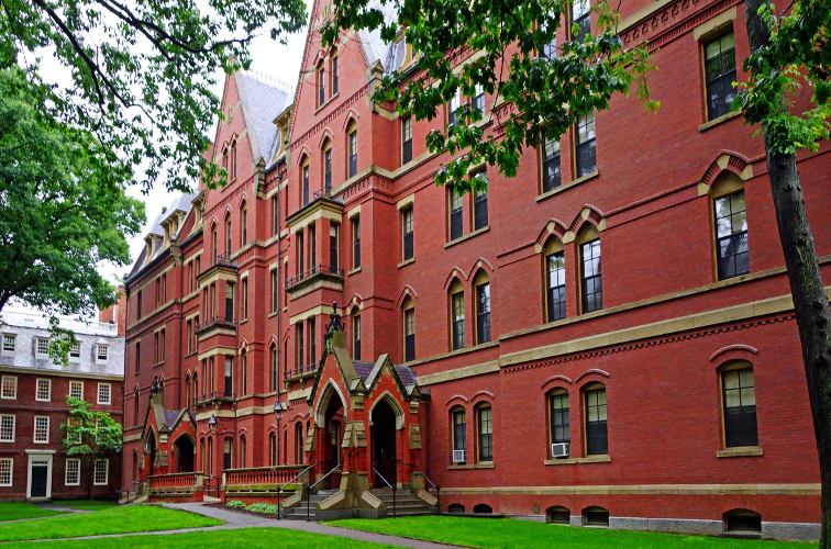 Moving From Local To Global With Executive Education In Harvard