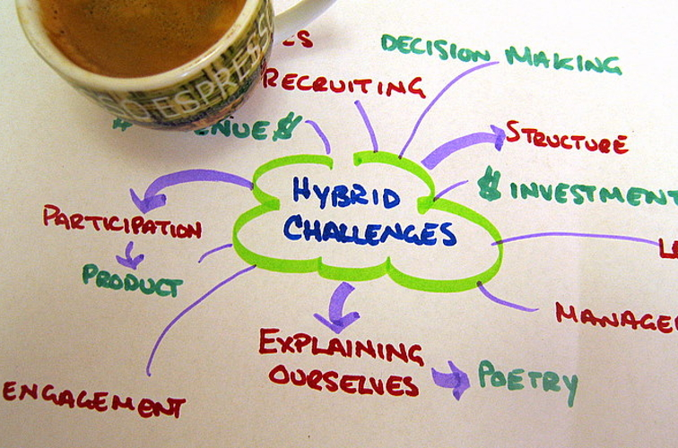 ENTREPRENEURSHIP - Dr. Nardia Haigh, Understanding The Socially Conscious Hybrid Organizations