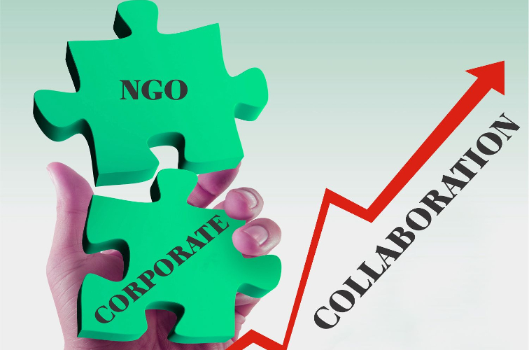 Dancing With The Devil: When NGO's Partner With Commercial Firms